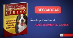 ADIESTRAMIENTO CANINO DESCARGAR